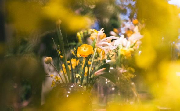 Yellow ranunculus flower – bell jar floral arrangements Hong Kong